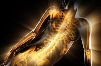 Heb een sterke ruggengraat! | enivacorp