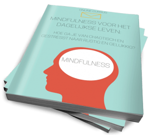 Mindfulness voor het dagelijks leven
